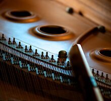 Grand Piano by Renee Hubbard Fine Art Photography