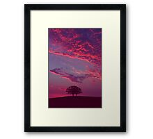 Blazing Double Tree Framed Print