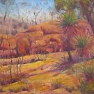 Pilbara Red  by David Hinchliffe