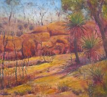 Pilbara Red  by David Hinchliffe