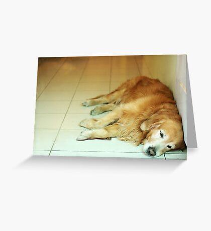 Tired like me Greeting Card