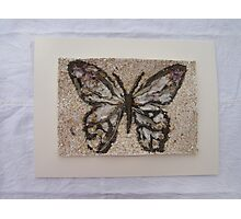 BUTTERFLY ~ 1 OUTDOOR FRAME Photographic Print