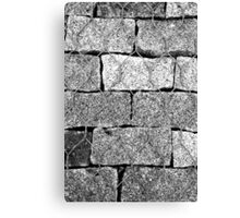 Brick Wire Canvas Print
