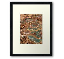 BUTTERFLY ~ 30 TURQUOISE  Framed Print