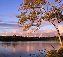 tweed river... by gail woodbury