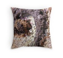 BUTTERFLY ~ 46 CURL Throw Pillow