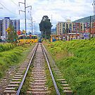 Railroad Tracks by Maria  Gonzalez