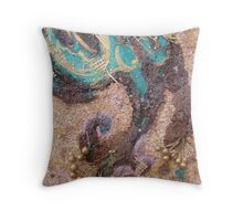 BUTTERFLY ~ 63 WING UP WING DOWN Throw Pillow
