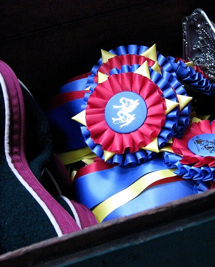 The Trophy Drawer by AngieDavies