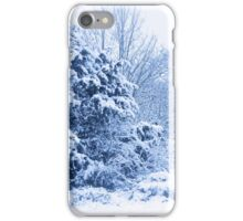 Winters scene  iPhone Case/Skin