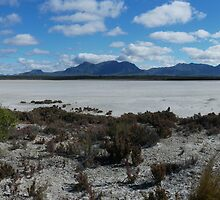 Salt lake in Stirling Ranges national park. by BigAndRed