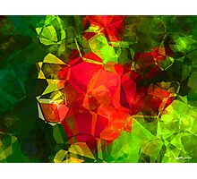 Abstract Polygons 10 Photographic Print