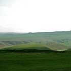 Wiltshire Wonderland by Acutogirl