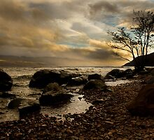 The Shore of Loch Ness by leahrenee