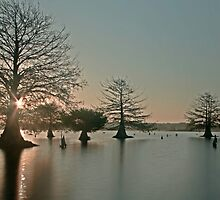 Sunken Island Sunrise by Troy Dalmasso
