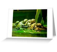 Turtles Greeting Card