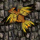 Yellow and red dracopheonix on bark background by Aurora