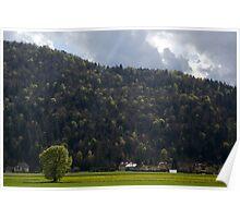 Ljubljana marshland Poster