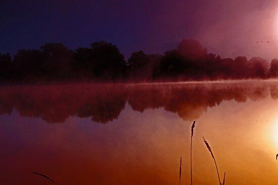 Morning mist by Chris Kiez