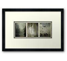 Everglades Framed Print