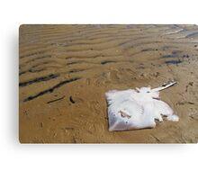Deadly beach Canvas Print