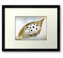Lady bug, Lady bug Framed Print