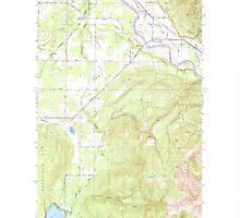 USGS Topo Map Washington State WA Lawrence 241957 1952 24000 by wetdryvac