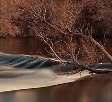 Spring rush by Chris Kiez