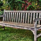 Come Sit A While... by Kris Montgomery