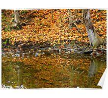Autumn glacier reflections Poster