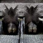 Schwein Brunnen  by snhood