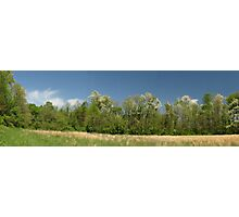 Kentucky Panorama Photographic Print
