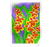 Kooky Orchids Poster