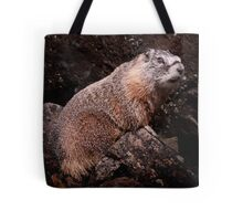 I'm The Nate Silver of Groundhogs Tote Bag