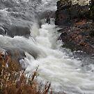 Murrumbidgee River  by julie anne  grattan