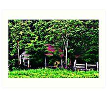 Hidden Barn Art Print