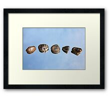Pebbles and Sky Reflection Framed Print