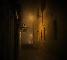 dark night in Venice by Cate Davies