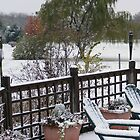 Early Ohio Winter by Sandra Lee Woods