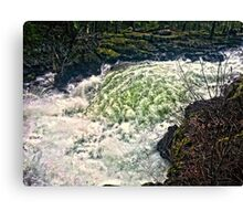 Mighty Rush Canvas Print