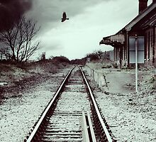 Desolation Station by Nikki Smith