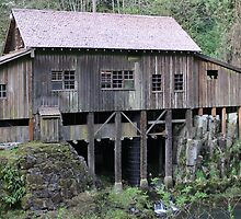 Cedar Creek grist mill by elginbigguy