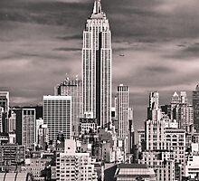 Skyline of New York City by danwa