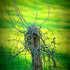 Old Fence Post by Mechelep