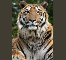 Tiger stares Unisex T-Shirt