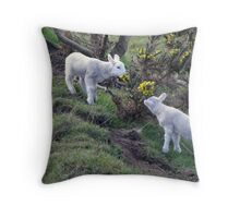 Lambs Puppy Food - Donegal Ireland  Throw Pillow