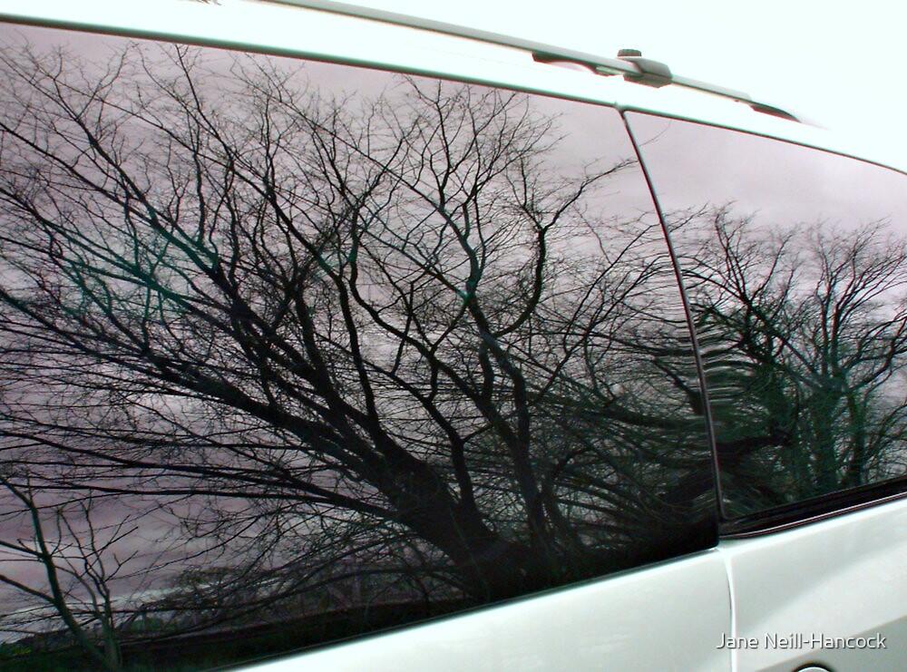 Beautiful Reflections in My Van Windows by Jane Neill-Hancock