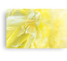 Tulip Abstract  Canvas Print