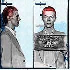 Rebel Rebel - David Bowie Mugshot by Bill Cannon