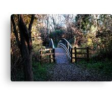 Old bridge in park Canvas Print